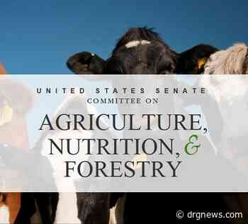NCBA says US House agriculture hearing echoed their push for more hook space - Drgnews