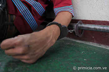 En Upata capturan a otro presunto implicado en un homicidio ocurrido en La Armonía - Diario Primicia - primicia.com.ve