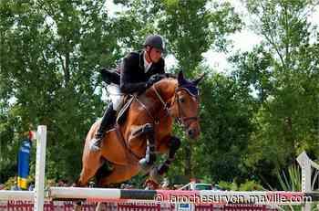 Vendée. Le cheval de compétition, roi de l'élevage local - maville.com