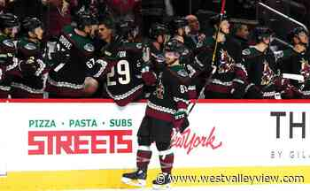 Arizona Coyotes' trade and draft rep 'new culture' - westvalleyview.com