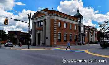 Orangeville Public Library seeks community input for future services - Orangeville Banner