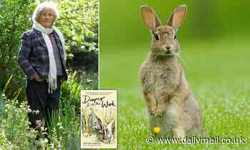 Where have all the rabbits gone? Ruth Pavey mourns the loss of the wildlife in her Somerset Wood