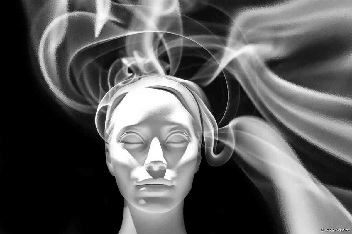 Hirnforschung und Dualismus: Wie war das mit der Seele? - Telepolis