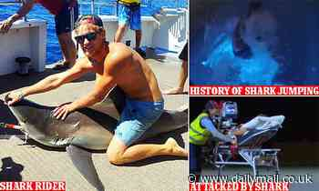Western Australia man Aaron Moir mauled by shark filmed jumping onto back of another in 2014