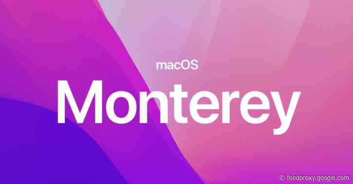 Apple releases new macOS Monterey build for public beta testers with Live Text for Intel Macs