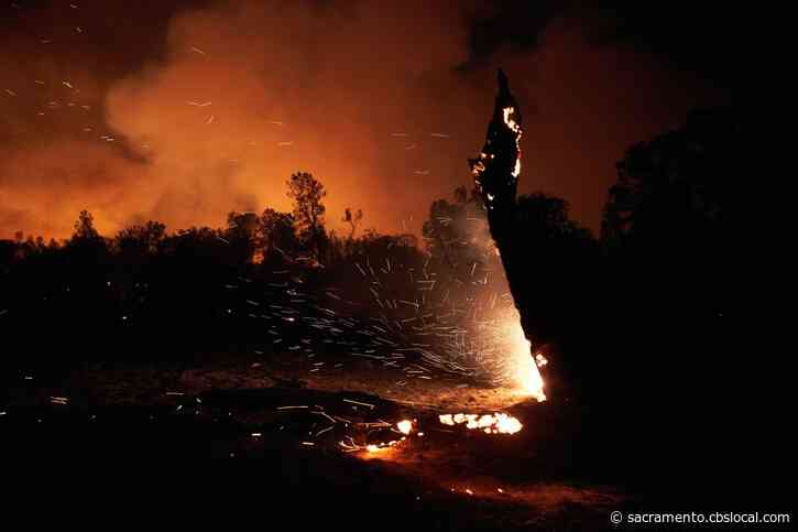 PG&E Criminally Liable For Deadly Zogg Fire In Shasta County, Prosecutors Say