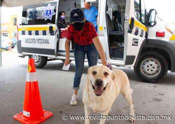 Campaña de Protección Animal en Soledad arroja resultados positivos - Revista Punto de Vista - RPDV