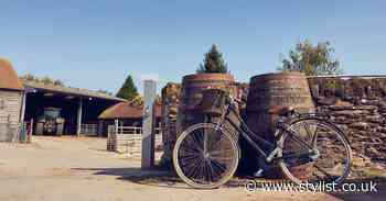 UK staycation ideas: go on a cycling cider tour of Herefordshire - Stylist Magazine