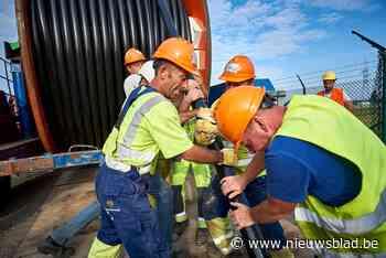 Vijftien kilometer eletriciteitskabel gaat vanaf maandag onder de grond