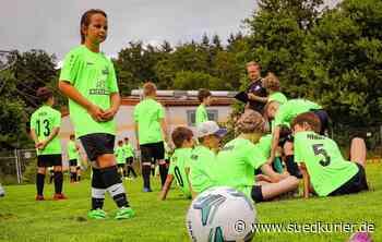 Radolfzell: Sie trainieren wie die Profis: Nachwuchskicker aus dem gesamten Kreis nehmen fünf Tage lang am Wiesenhof-Fußballcamp in Radolfzell teil - SÜDKURIER Online
