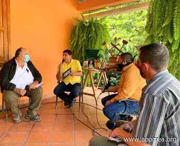 Mérida: Vivero Cafetero del estado produce más de un millón de plantas cada seis meses - Aporrea
