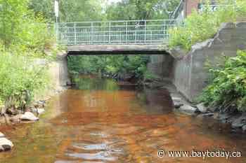 New pedestrian bridge for Kinsmen Trail link