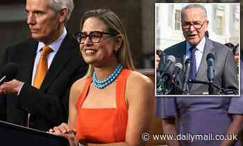 Senator Kyrsten Sinema REFUSES to cancel her vacation if August recess is delayed for key votes
