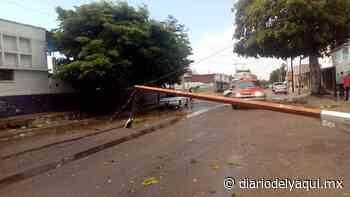 Fuertes vientos causan daños en Huatabampo - Diario del Yaqui