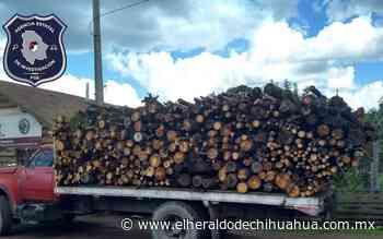 Detienen chofer de camión cargado de madera en Guadalupe y Calvo - El Heraldo de Chihuahua