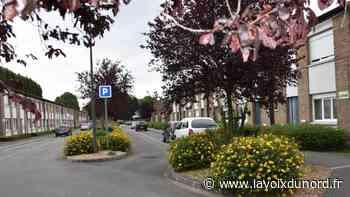 Nieppe : à la cité Coisne, les habitants aimeraient un béguinage pour personnes âgées - La Voix du Nord