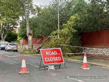 Storm Evert: Rugby Road, Worthing blocked by fallen tree
