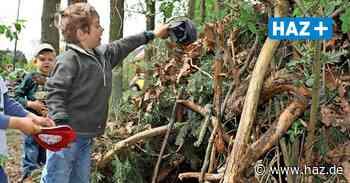 Lehrte: Waldtage im Hämelerwald in Sommerferien 2021: Grundschulkinder können sich noch anmelden - Hannoversche Allgemeine