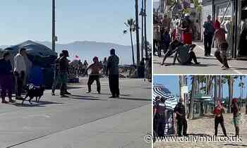 Venice Beach homeless man screeches like a banshee and attacks a rival with stick