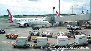 Qantas vows to appeal outsourcing defeat - Forbes Advocate