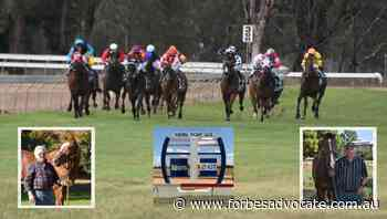 Cracking fields assembled for Forbes Cup Showcase day - Forbes Advocate
