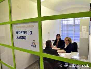 """L'imprenditore vuole assumerlo, romeno lo pesta: """"Prendo il reddito di cittadinanza"""""""
