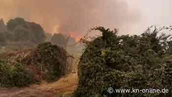 Hunderte Waldbrandeinsätze auf Sizilien - Feuer vor Großstadt Catania
