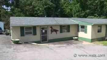 Danville Pet Resort owner says Maryland woman abandoned 38 dogs at her resort - WSLS 10