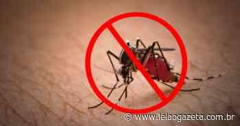 Hospital Santa Maria de Suzano reforça combate à dengue - Leia o Gazeta