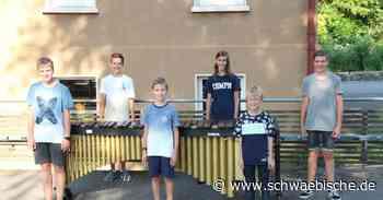 Junge Schlagzeuger aus Meckenbeuren dürfen zum Bundeswettbewerb - Schwäbische
