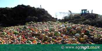 Walmart Foundation funds food waste trials with WRAP - Agriland.co.uk