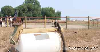 Montana Reins of Hope offers healing to horses, humans and habitat - KPAX-TV