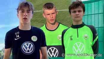 Ein Pole, ein Däne und ein Finne von Chelsea: Wolfsburg holt drei Talente für den Nachwuchs - Sportbuzzer