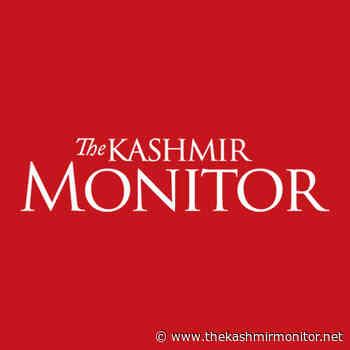 Forget government jobs, Kashmir youth try entrepreneurship to earn livelihood - The Kashmir Monitor - The Kashmir Monitor