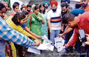 PhD, NET-qualified aspirants of Punjabi University demand jobs, hold protest - The Tribune