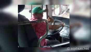 Delincuentes asesinan a transportista para robarlo en la vía Cumaná–Cumanacoa - El Pitazo