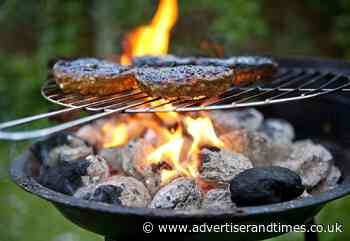 Call for barbecue ban at New Forest campsites - Advertiser and Times