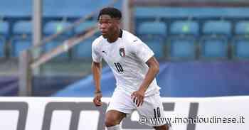 Notizie Udinese – Silvestri e Udogie già si prendono in mano la squadra - Mondo Udinese