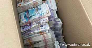 Police stop driver and find £250,000 in cash stashed in cardboard box in car