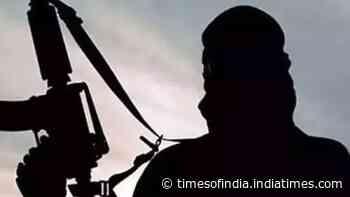 Top Jaish commander among 2 militants killed in encounter in J&K