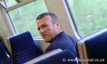 Police release image in hunt for rail passenger seen hitting child four times in the head