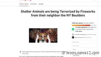 Petition alleges New York Boulders stadium fireworks are terrorizing animals at nearby shelter - News 12 Bronx