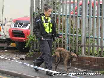 Animals rescued and three men arrested as 'starving' dogs, cats and horses found - expressandstar.com