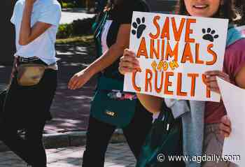 ASPCA: Are they really helping or hurting animals? - AGDAILY
