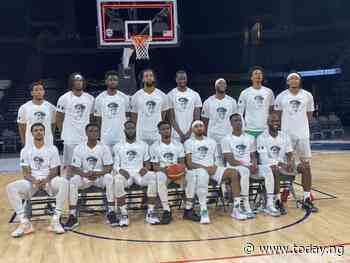 Tokyo Olympics: NBBF boss, minister hail D'Tigers for representing Nigeria 'very well'