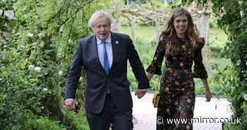 Boris Johnson and Carrie expecting second child after miscarriage heartbreak