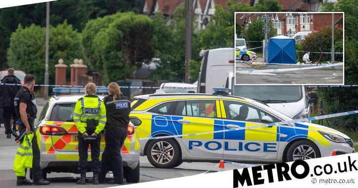 Murder probe after man found dead in street 'surrounded by gang of males'