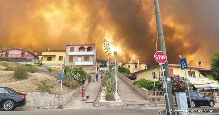 Incendi Sardegna, il simbolo della terra è Lussurzesa. Una cerbiatta con le zampe ustionate salvata da un gruppo di cacciatori