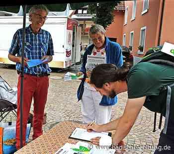Verein fordert soziale Bebauung von Wohnhof 5 - Kirchzarten - Badische Zeitung