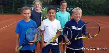 Erfolgreicher Tennisnachwuchs: Wie die Saison der U12-Juniorenmannschaft des TC Heidenheim lief - Heidenheimer Zeitung